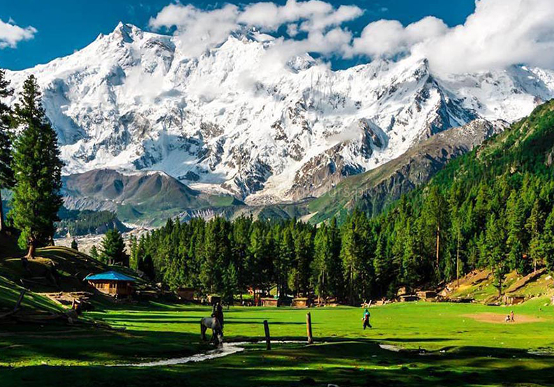 Fairy Meadows, Nanga Parbat Base Camp - Rock Valley Tours