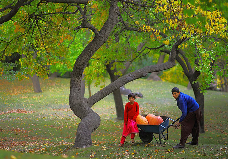 Hunza Cultural Tours - Rock Valley Tours Pvt Ltd